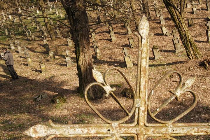 A magyar temető – háttérben a hadisírok (Kép: Izing Máté)