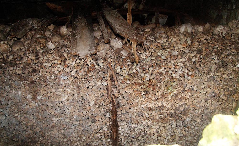 Magyar csontok és koponyák